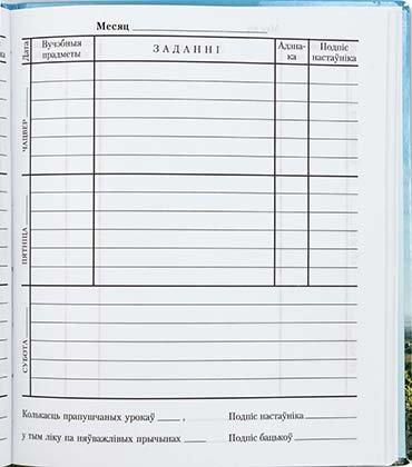 Дневник школьный «